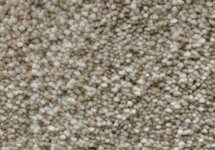 Stainmaster plush carpet | Raby Home Solutions