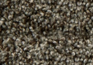 Stainmaster textured carpet | Raby Home Solutions