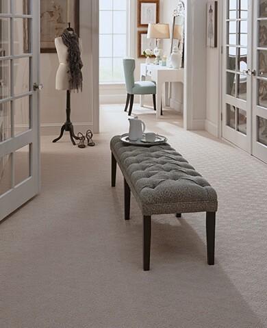 Karastan Carpet   Raby Home Solutions
